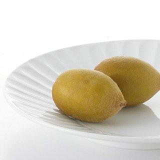 竹林24cmプレート丸皿