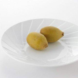 斜面取 8寸丸皿