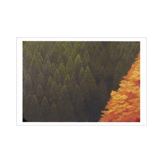 オリジナルポストカード 東山魁夷「谿紅葉」