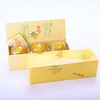 日向夏ようかん「黄娘」 3個箱入り 冷凍便に同梱可能の商品です。