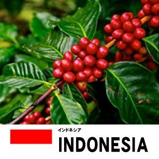 【スペシャリティコーヒー】スラウェシ ママサの商品画像