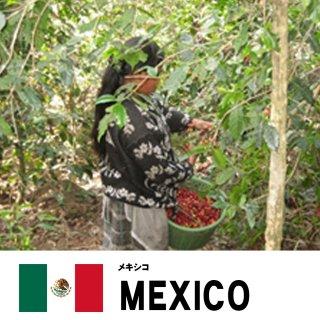 【スペシャリティコーヒー】メキシコ サンアントニオ農園 アナエロビックの商品画像
