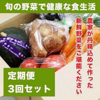 【月3回お届け】 お買い物代行応援 旬の野菜セット (3〜4人のご家族様用)