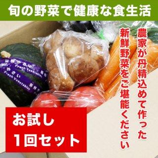 【送料無料】旬の野菜お試しセット (3〜4人のご家族様用)