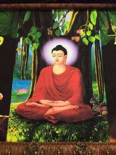 仏画掛軸  菩提樹下修行中の釈迦