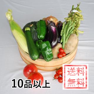 おかやま地消地産の店 店長おすすめ季節の野菜セットA 【加工品・お米(一部商品除く)同梱可能】