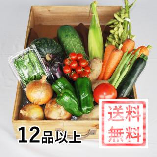 おかやま地消地産の店 店長おすすめ季節の野菜セットB 【加工品・お米(一部商品除く)同梱可能】
