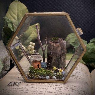 【樹のかけら】六角ケース:シナモンの家と崖