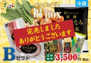 【限定50・送料無料】オープン記念福BOX Bセット