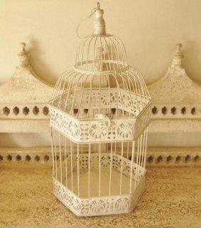 TheDelight malti bird cage マルチ バード ケージ Lsize